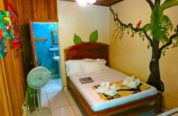 A standard accommodation at Cabinas Jimenez costs 50 USD