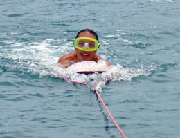 Interested in Snorkeling and Dolphin and Whale Watching?